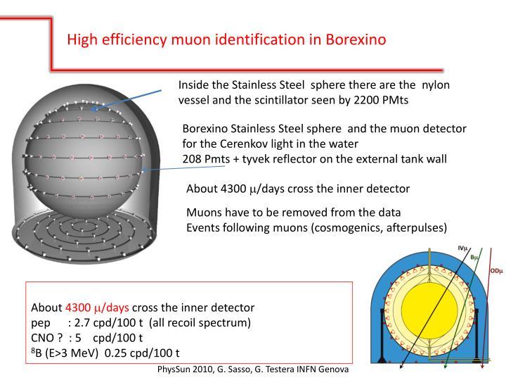 High efficiency muon identification in Borexino
