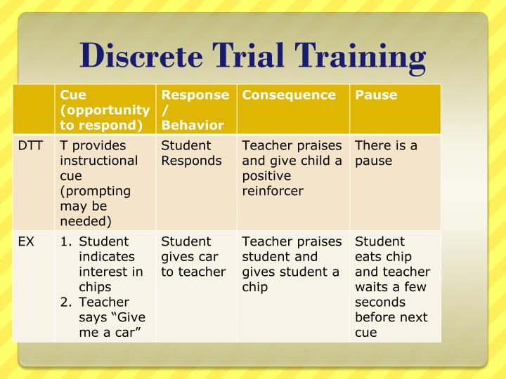 Discrete Trial Training