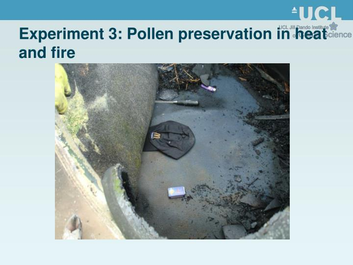 Experiment 3: Pollen preservation in heat and fire