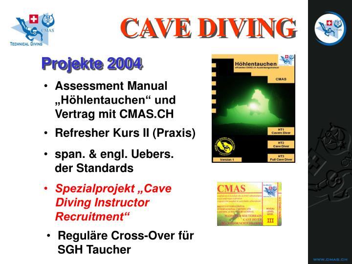 Assessment Manual
