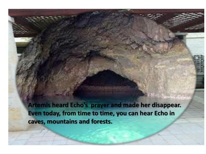 Artemis heard Echo's  prayer and made her disappear.