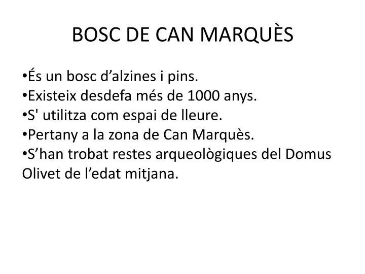 BOSC DE CAN MARQUÈS