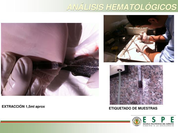 ANÁLISIS HEMATOLÓGICOS