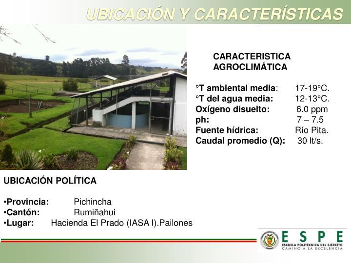 UBICACIÓN Y CARACTERÍSTICAS