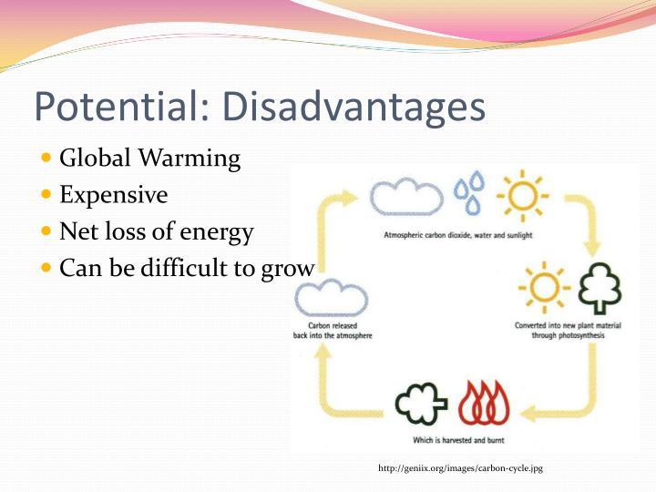 Potential: Disadvantages
