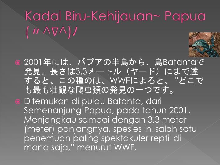 Kadal Biru-Kehijauan~ Papua