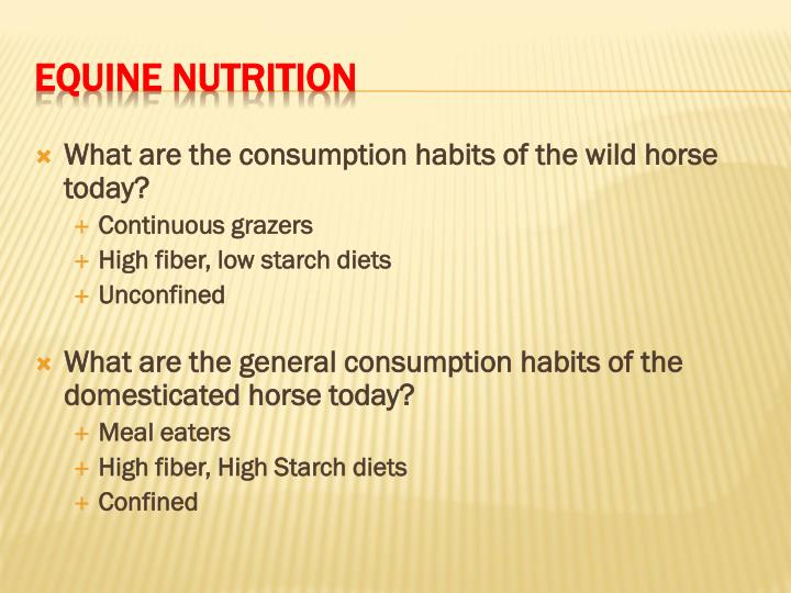 What are the consumption habits of the wild horse today?