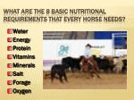 what are the 8 basic nutritional requirements that every horse needs