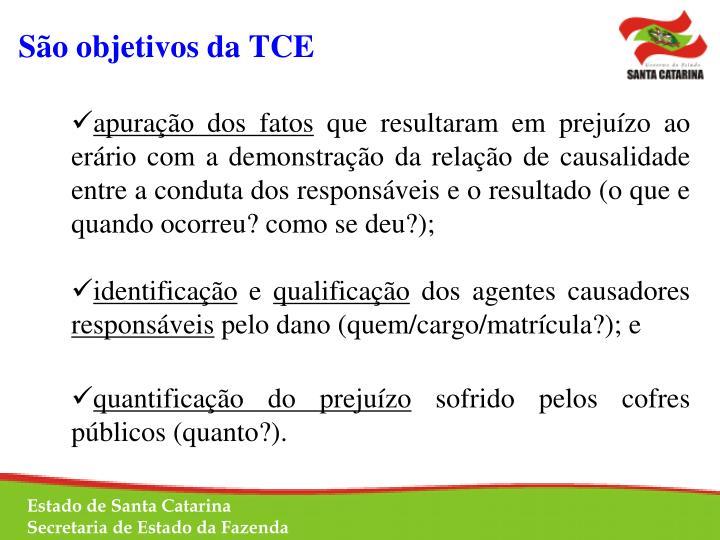 São objetivos da TCE