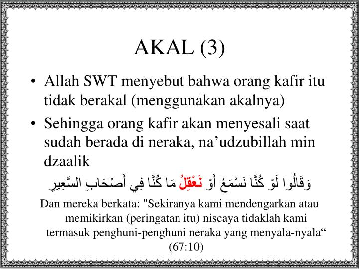 AKAL (3)