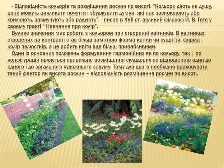 - Відповідність кольорів та розміщення рослин по висоті.