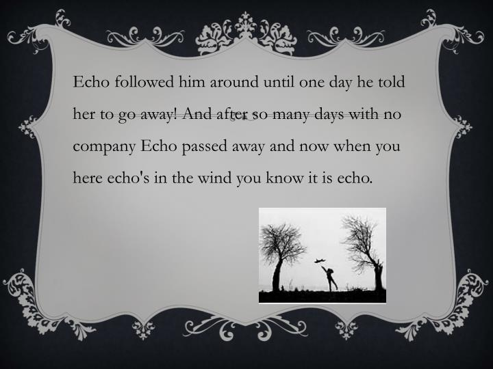 Echo followed him around until one day he told her to go away! And after so many days with no company Echo passed away and now when you here echo's in the wind you know it is echo.