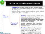 data set berdasarkan tipe variabelnya