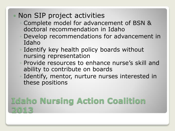 Non SIP project activities