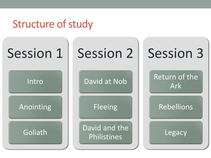 Structure of study