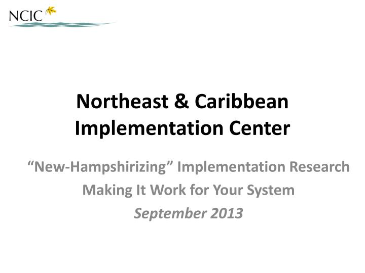 northeast caribbean implementation center