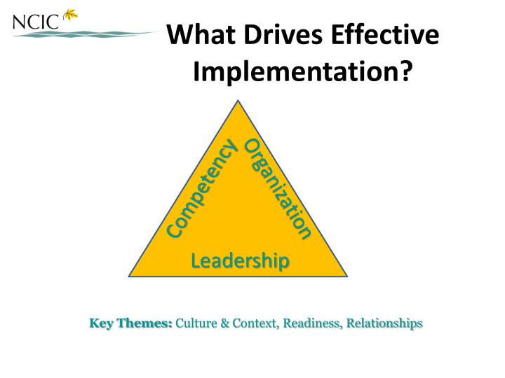 What Drives Effective Implementation?