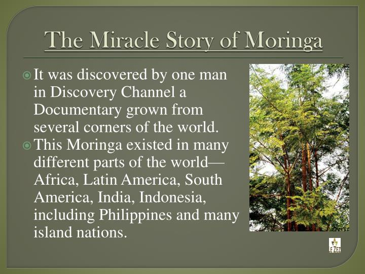 The Miracle Story of