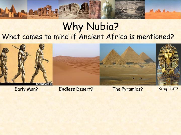 Why Nubia?