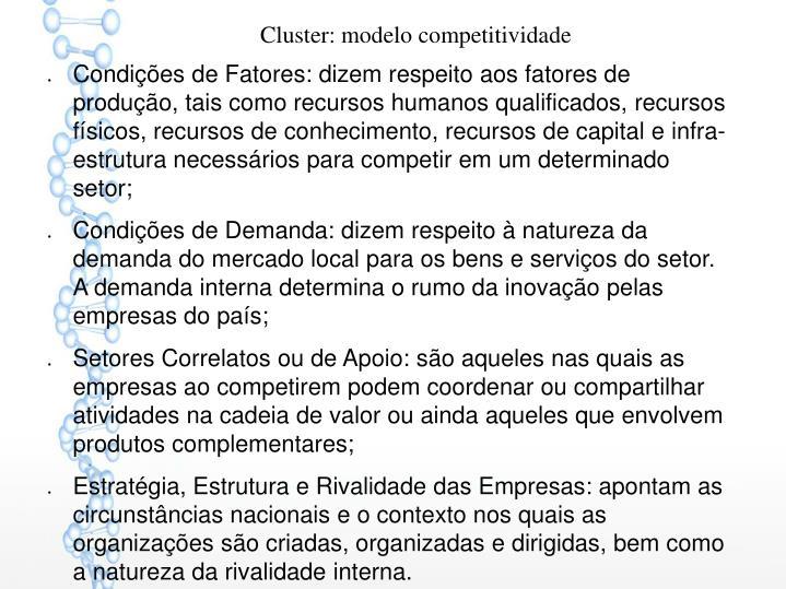 Cluster: modelo competitividade