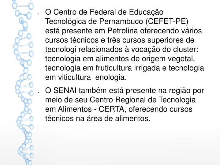O Centro de Federal de Educação Tecnológica de Pernambuco (CEFET-PE) está presente em Petrolina oferecendo vários cursos técnicos e três cursos superiores de
