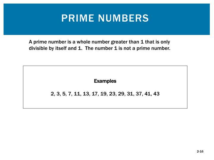 Prime Numbers