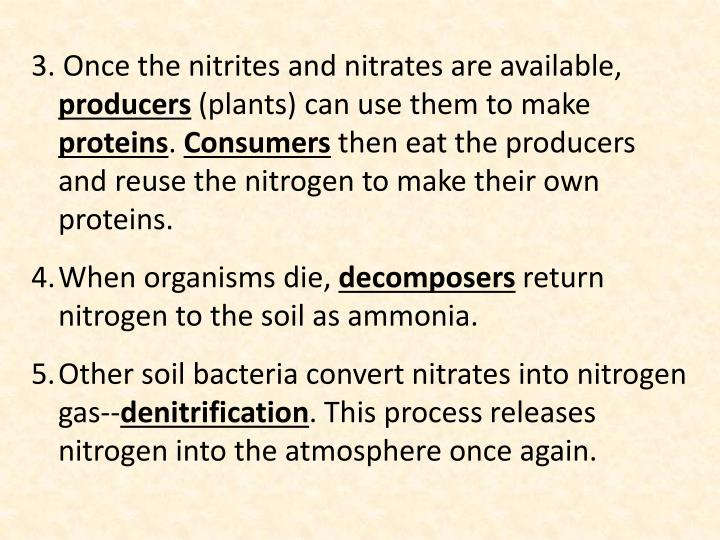 3. Once the nitrites and nitrates are available,