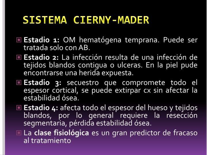 SISTEMA CIERNY-MADER