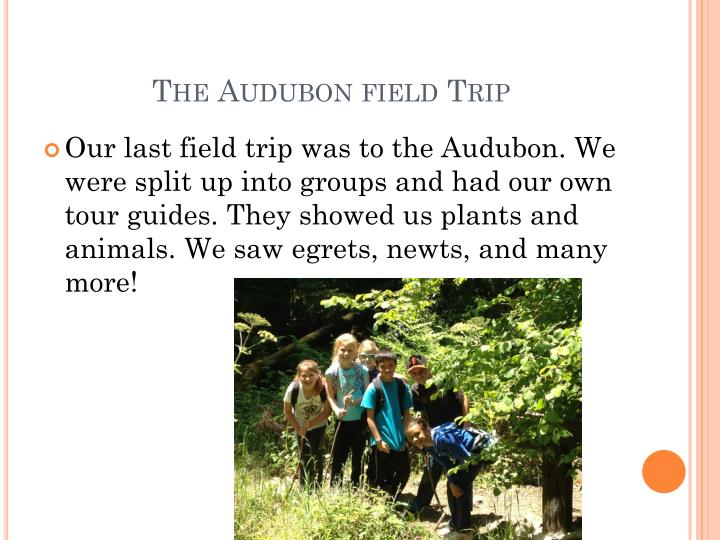 The Audubon field Trip