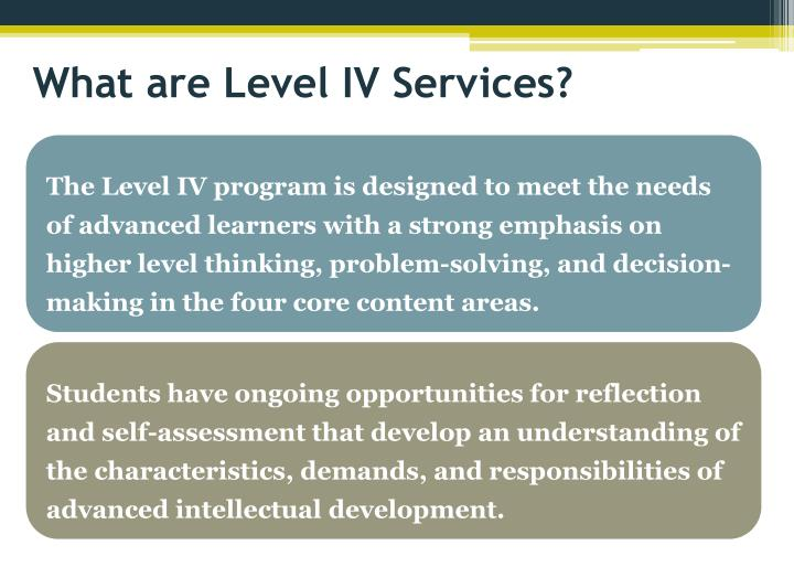 What are Level IV Services?