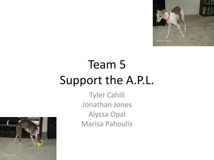 Team 5 support the a p l