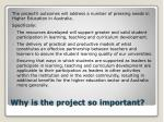 why is the project so important