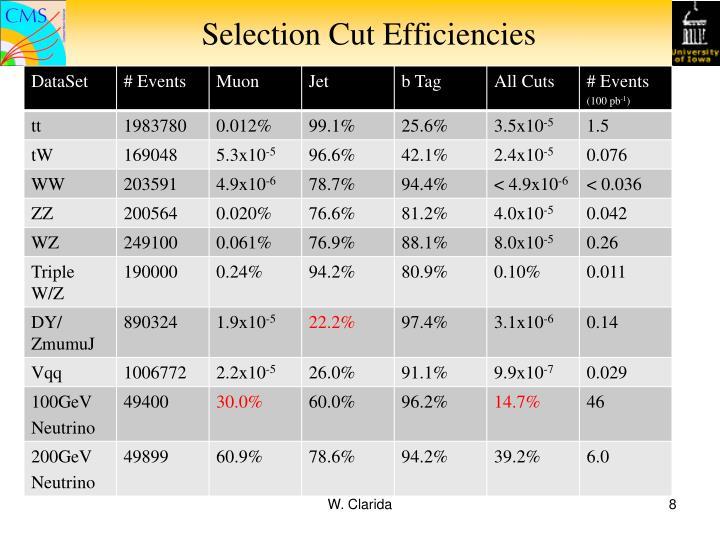 Selection Cut Efficiencies