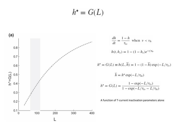 A function of T-current inactivation parameters alone