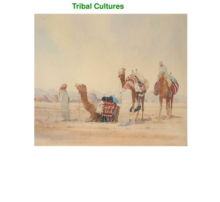 Tribal Cultures
