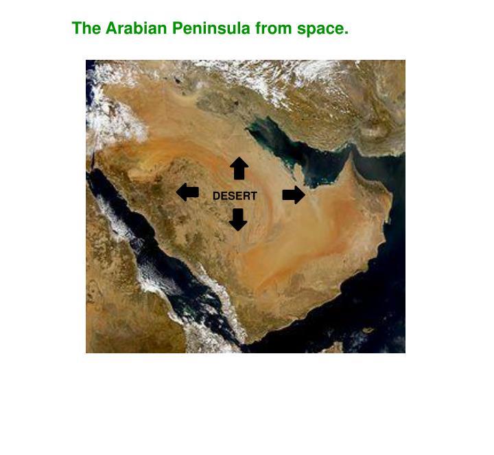 The Arabian Peninsula from space.