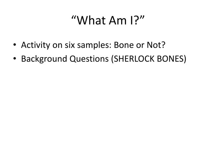 """""""What Am I?"""""""