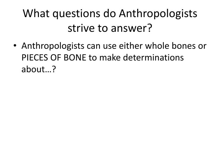 What questions do Anthropologists strive to answer?
