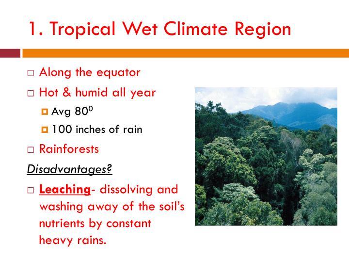 1. Tropical Wet Climate Region
