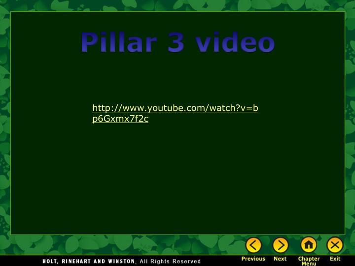 Pillar 3 video