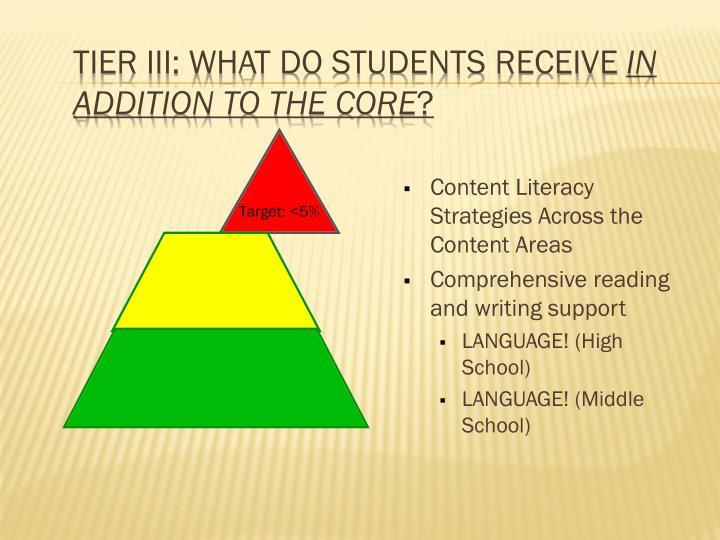 Tier III: What do students receive