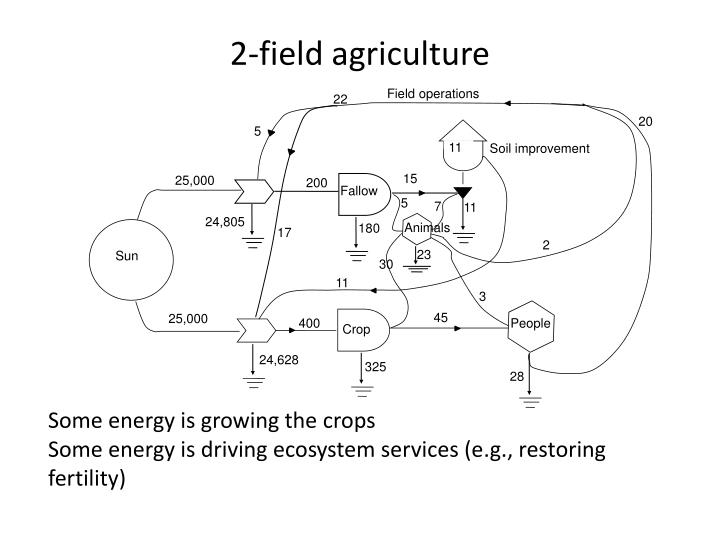 2-field agriculture