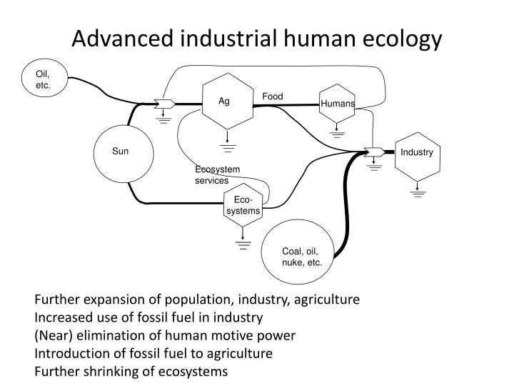 Advanced industrial human ecology
