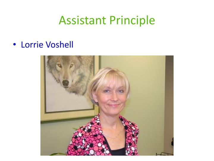 Assistant Principle