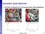automatic scale selection4