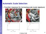 automatic scale selection5