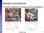 automatic scale selection6