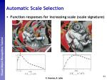 automatic scale selection7