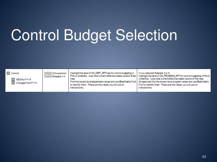 Control Budget Selection