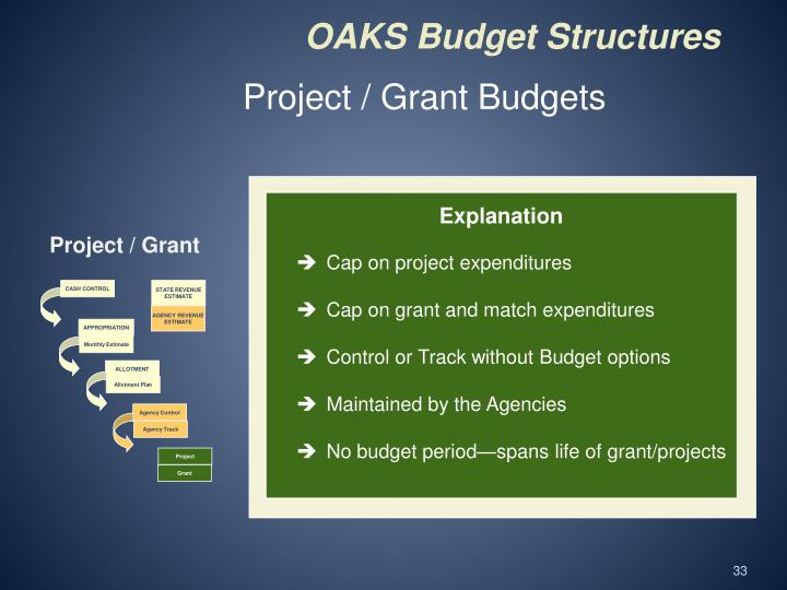 Project / Grant Budgets